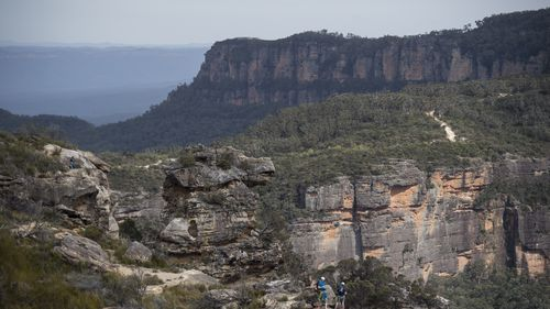 Narrow Neck in Katoomba, Blue Mountains were the panther has previously been sighted.