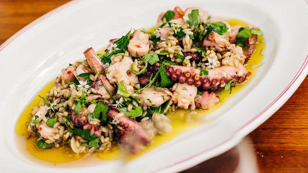 Massimo Mele's octopus, barley, garlic, chilli salad