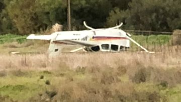 Transport bureau to investigate light plane crash