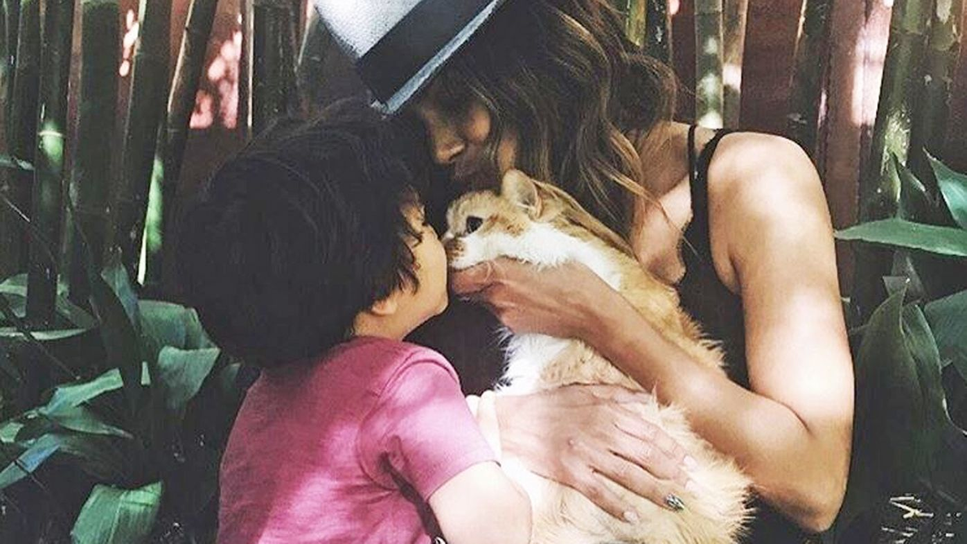 Halle Berry cat Playdough