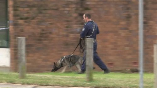Police are hunting the driver who fled on foot. (9NEWS)