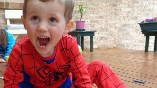 William Tyrrell was wearing a Spiderman costume when he disappeared from the NSW mid-north coast, September 12, 2014.
