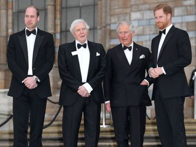 Fresh royal rivalry between Harry and Wills