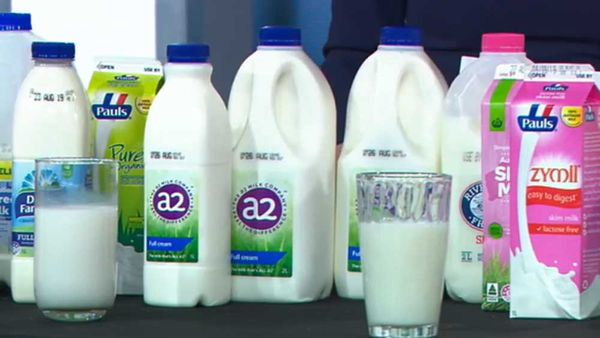 How to choose the best milk