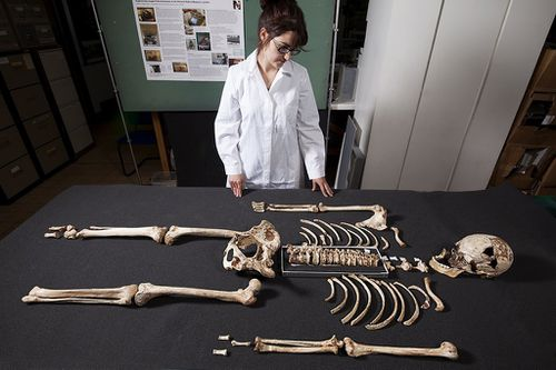The skeleton reveals the Cheddar Man most likely died in his 20s. (AAP)