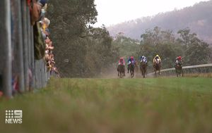 Country spirit on show as bushfire-hit region goes to the races