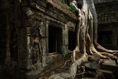 <strong>Lara Croft: Tomb Raider temple in&nbsp;Siem Reap, Cambodia</strong>