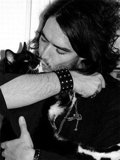 Stars and their cute kitties!<br/><br/>Objectified cat