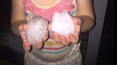 Terry O'Leary, a watermelon farmer and cattle breeder, posted this photo of a young girl holding two large hailstones. (Supplied/Terry O'Leary)