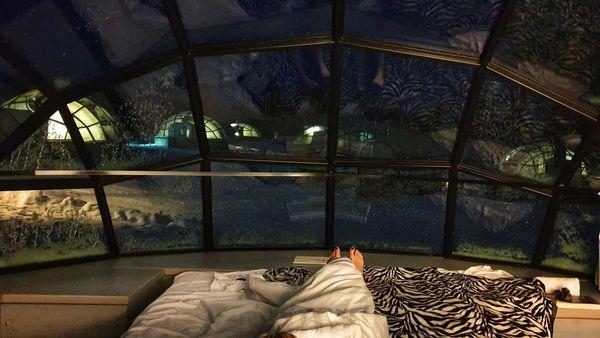 Inside Finland's glass igloos