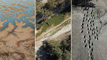 Bird's-eye view reveals drought-devastated Darling River