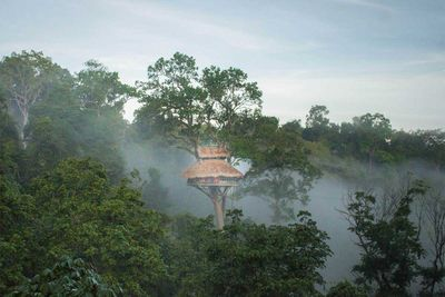 The Gibbon Experience, Laos