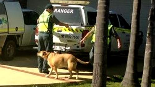 Rangers remove dog from home of Gammy couple