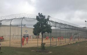 Whistleblower alleges high rate of hysterectomies and medical neglect at US immigration facility