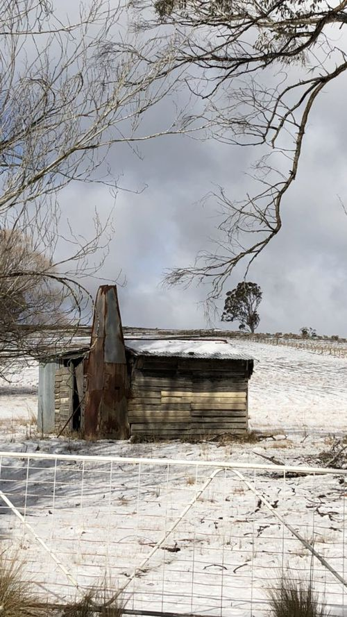 Snow in Oberon NSW. Picture: Donna Coventry
