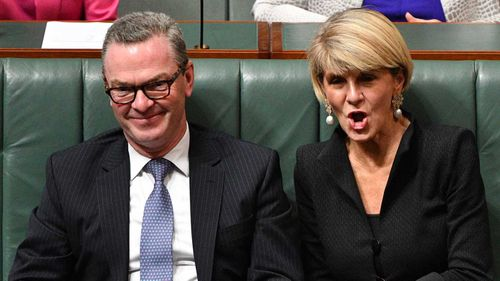 Julie Bishop has said Christopher Pyne is responsible for her leadership spill defeat.