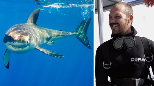 Mike 'Sharkman' Rutzen has been free diving with great whites, tiger sharks and bull sharks since 1998. (Getty / Facebook)