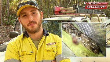 'It was him or me': Queensland tradie who battled brown snake in ute speaks