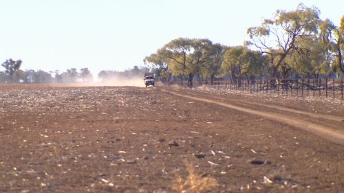 The drought affecting parts of NSW and Queensland is the worst in more than a century. (The TODAY Show)