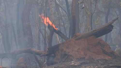 Residents near Irvinebank in North Queensland have been urged to evacuate their homes.