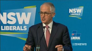 VIDEO: Turnbull wins internal Liberal stoush