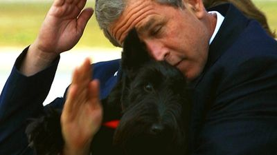 Former US president George W. Bush's infamous attempt to salute while holding his dog. (Getty)