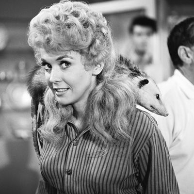 Donna Douglas, 1963