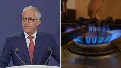 States reject Turnbull's call to develop gas fields