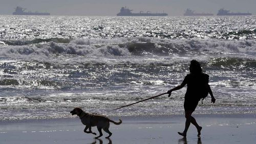 Tankers line up along the coast of California as the collapse in the market renders their oil practically worthless.