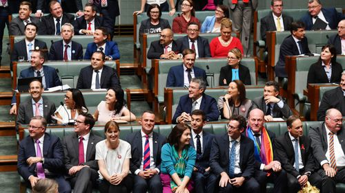 The members voting yes on in the House of Representatives. (AAP)