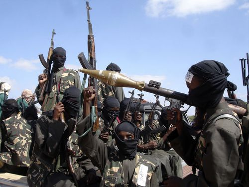 The airstrikes targeted members of the al-Shabab extremist group in Somalia.