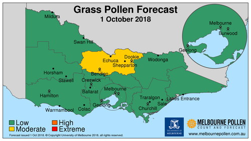 Today's pollen forecast is low for Melbourne.