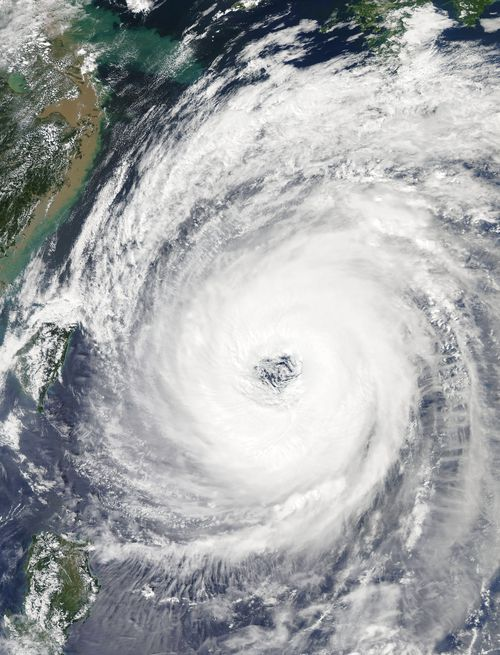 It's the strongest typhoon to make landfall in Japan in 25 years.