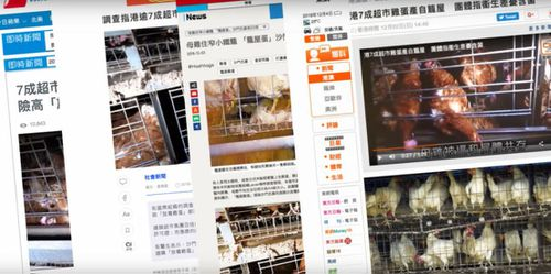 Upwards of 15 media platforms in Hong Kong and across China jumped on the story.