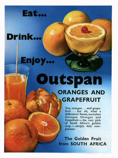 <strong>1970s - The grapefruit diet</strong>