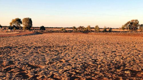 The land is so dry not even weeds will grow.