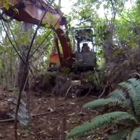 Extraordinary revival of big rig abandoned in forest for 16 years