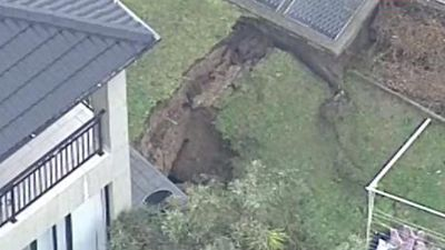 This sinkhole in Sydney south brought down trees and sparked concerns about neighbouring properties. (9NEWS)