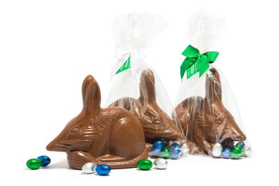 Haigh's large milk chocolate bilby: 246 minutes moderate swimming