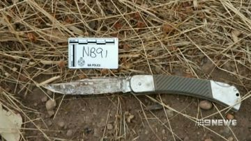 Dr Richard Sheperd said some of the wounds described are much longer than the length of the blade of the knife seized as evidence.