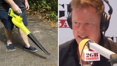 Ben Fordham talks about leaf blowers on 2GB