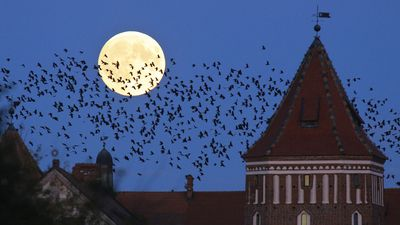 The moon behind a cathedral in Mir, Belarus. (AAP)