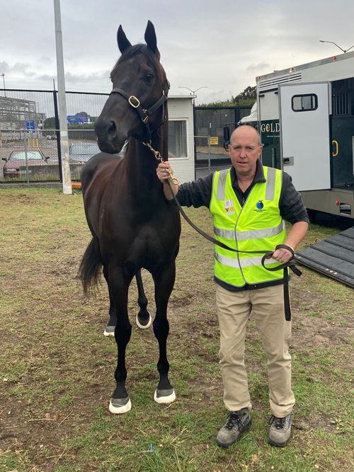 Cameron Croucher's unique job means he has faced repeat stints in quarantine every time he flies out of Australia to make sure thoroughbreds worth many millions of dollars make it to the destination safely.