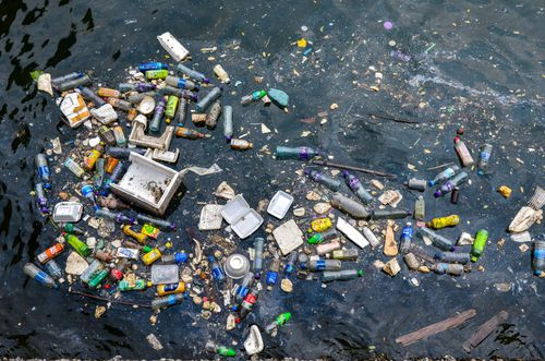 Approximately one ton of plastic debris can be found for every kilometre of coastline in Far North Queensland.
