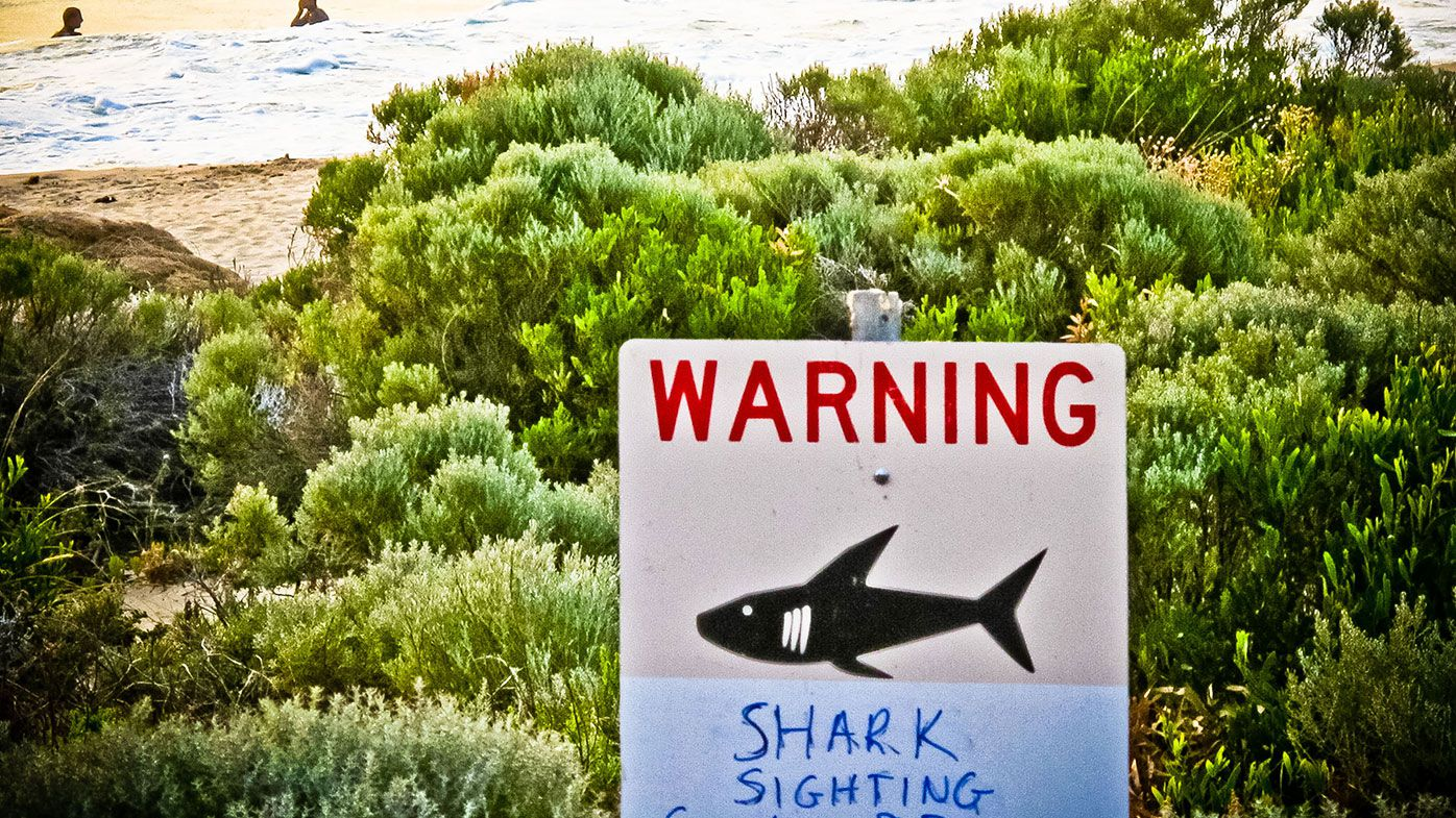 A shark sighting sign is displayed near Prevelly Beach at the mouth of the Margaret River in Western Australia