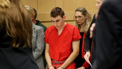 Florida school shooter bought 10 guns in past year