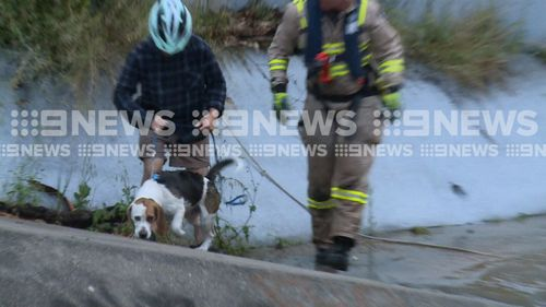 The SES, CFA, Victoria Police and Ambulance Victoria all worked to bring the family to safety.