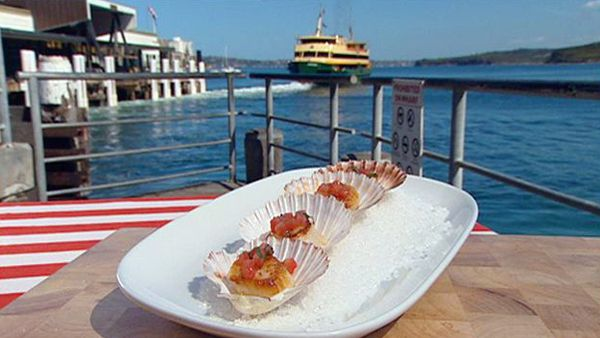 Barbecue seared scallops with sauce vierge