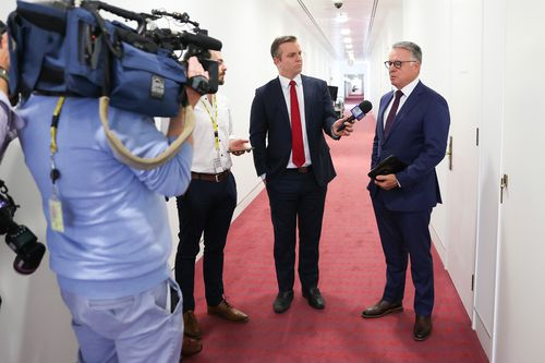 Labor MP Joel Fitzgibbon is interviewed by 9News political reporter Jonathan Kearsley at Parliament House today.