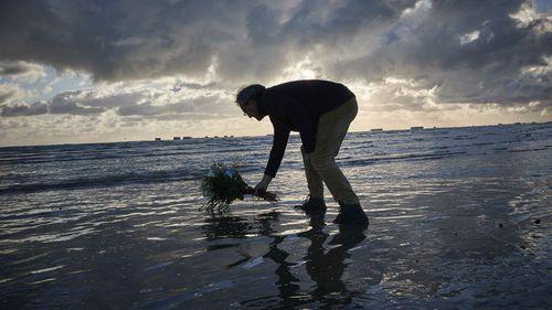 Adrian Cox, a British Expat and Councilor of Arromaches, lays flowers in the sea to commemorate the 76th Anniversary of the D-Day landings at dawn on Gold Beach on June 06, 2020 in Arromanches-les-Bains, France